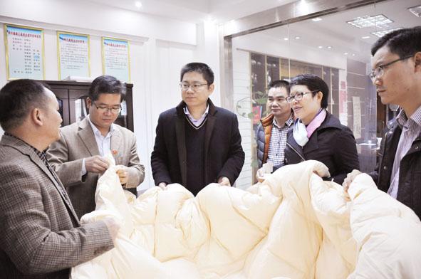杨亚俊书记到桥圩镇调研羽绒产业