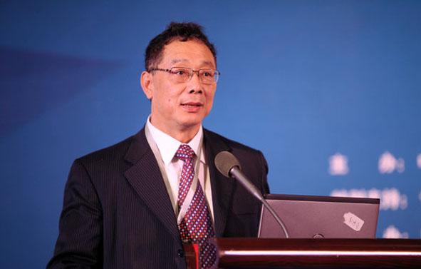 李铁 国家发改委城市与小城镇发展研究中心主任