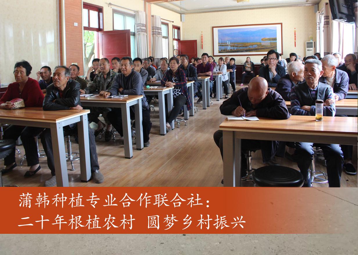 蒲韩种植专业合作联合社:二十年根植农村 圆梦乡村振兴
